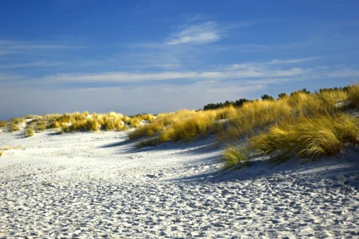 dunes-4033821_1920(1).jpg